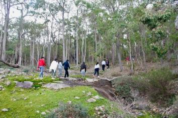 hutan yang masih asri dengan kali kecil (creek) di celah bebatuan yang hanya dialiri air kala hujan...