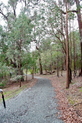 jalan setapak disekitar yang terawat baik, tempat yang nyaman untuk sekedar berjalan menghirup udara segar...